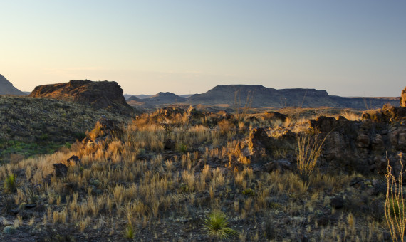 The Llano