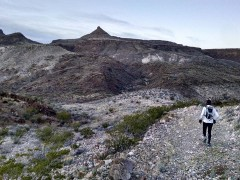 Big Bend 50 Mile Ultra